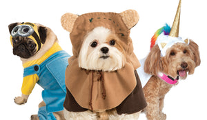 PET COSTUMES &  COSTUME ACESSORIES