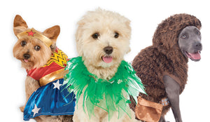 PET COSTUMES &COSTUME ACCESSORIES