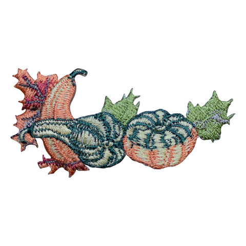 Pumpkin, Gourds and Leaves Applique Patch (Iron on)
