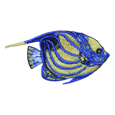 Tropical Blue-Ring Angelfish Applique Patch - Blue and Yellow (Iron on)