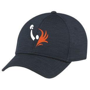 Phoenix Boxing Ball Cap