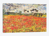 Field of Poppies by Vincent van Gogh Canvas Print 40