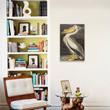 American White Pelican by John James Audubon Canvas Print