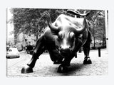 Wall Street Bull Black & White Canvas Print 40