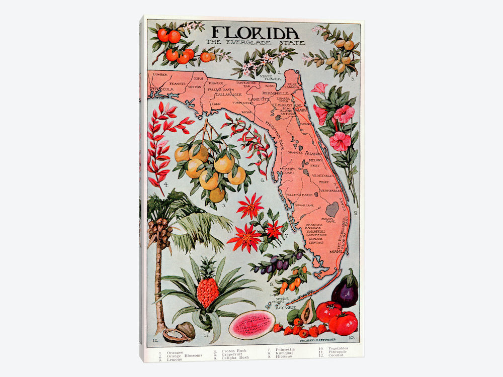 "State Map of Florida Natural Resources  Vintage Poster Canvas Print 26"" L x 40"" H x 0.75"" D - eWallArt"