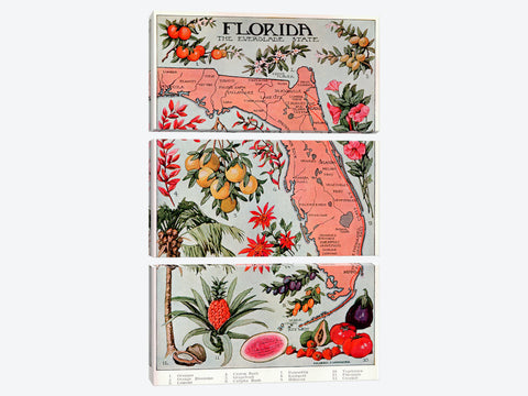 "State Map of Florida Natural Resources  Vintage Poster Canvas Print 26"" L x 40"" H x 0.75"" D"