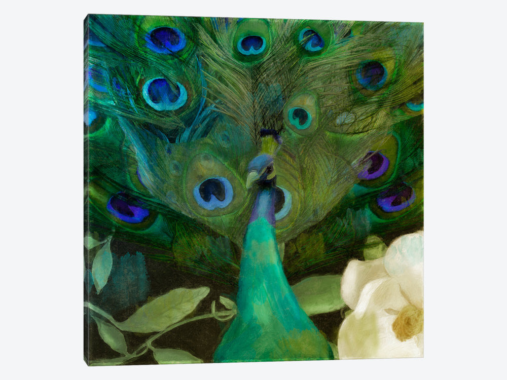 "Aqua Peacock by Color Bakery Canvas Print 37"" L x 37"" H x 0.75"" D - eWallArt"