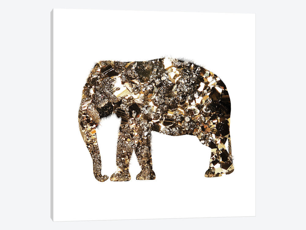 "Golden Elephant by Andreas Lie Canvas Print 26"" L x 26"" H x 0.75"" D - eWallArt"