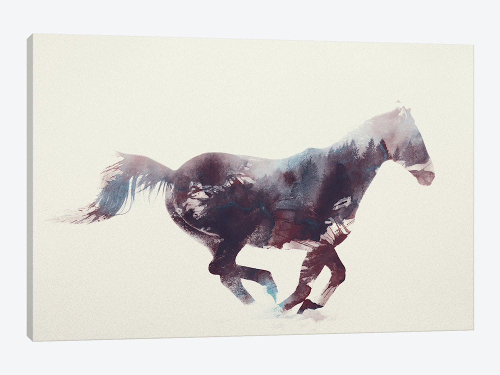 "Horse I by Andreas Lie Canvas Print 40"" L x 26"" H x 0.75"" D - eWallArt"