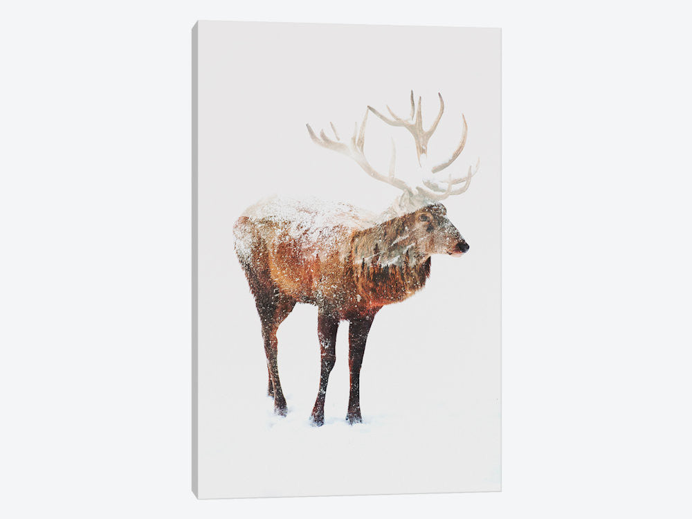 "Deer V by Andreas Lie Canvas Print 26"" L x 40"" H x 0.75"" D - eWallArt"