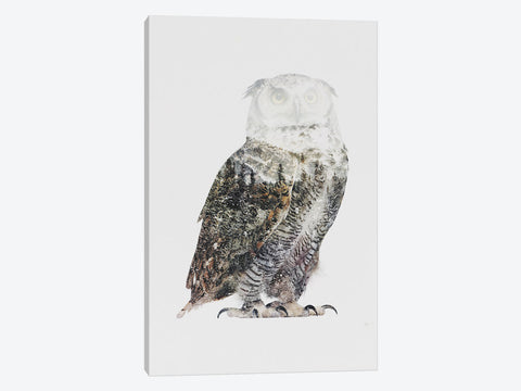 "Arctic Owl by Andreas Lie Canvas Print 40"" L x 60"" H x 0.75"" D"
