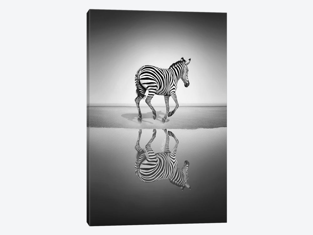 "Sea of Freedom by Ben Heine Canvas Print 26"" L x 40"" H x 0.75"" D - eWallArt"