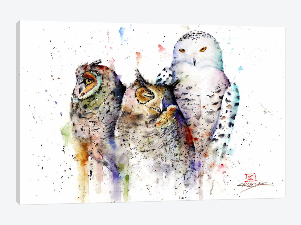 "Owls Don't Sleep by Dean Crouser Canvas Print 26"" L x 18"" H x 0.75"" D - eWallArt"