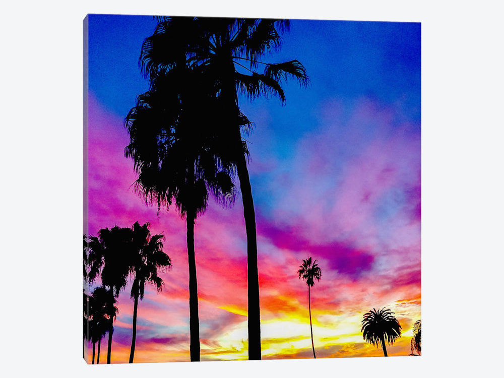 "Painted Skies Above the Palms by 5by5collective Canvas Print 37"" L x 37"" H x 0.75"" D - eWallArt"