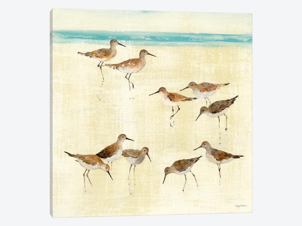 "Sandpipers  by Avery Tillmon Canvas Print 37"" L x 37"" H x 0.75"" D - eWallArt"
