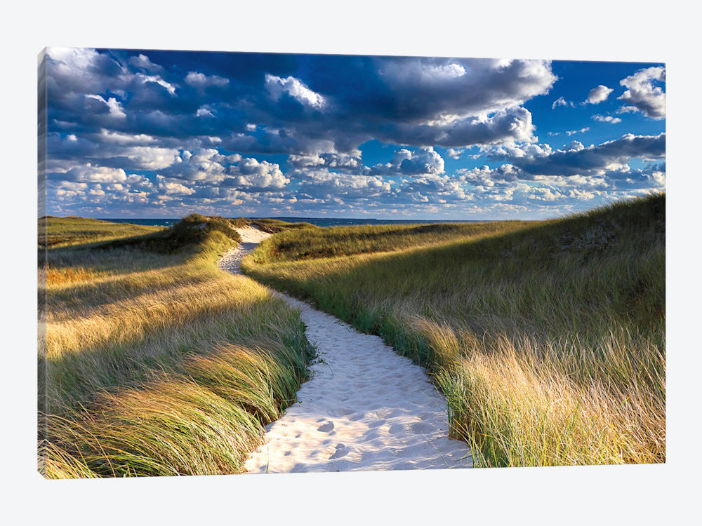 "Philbin Beach Path by Katherine Gendreau Canvas Print 26"" L x 18"" H x 0.75"" D - eWallArt"