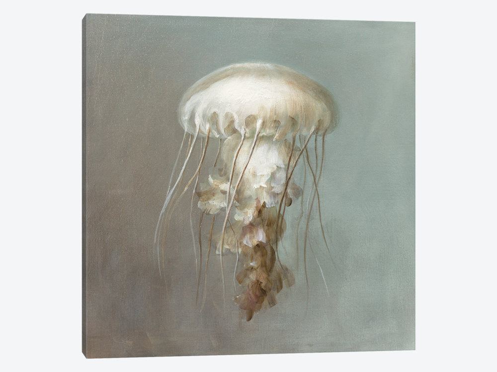 "Treasures from the Sea VI by Danhui Nai Canvas Print 37"" L x 37"" H x 0.75"" D - eWallArt"