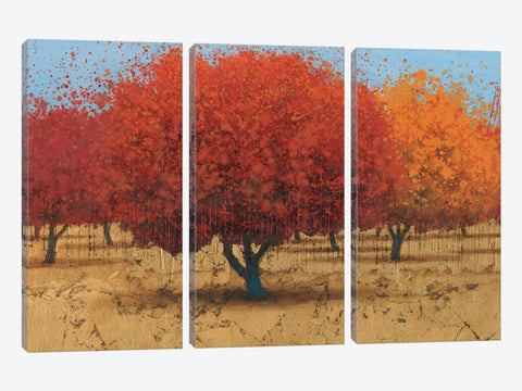 "Orange Trees II by James Wiens Canvas Print 26"" L x 18"" H x 0.75"" D"