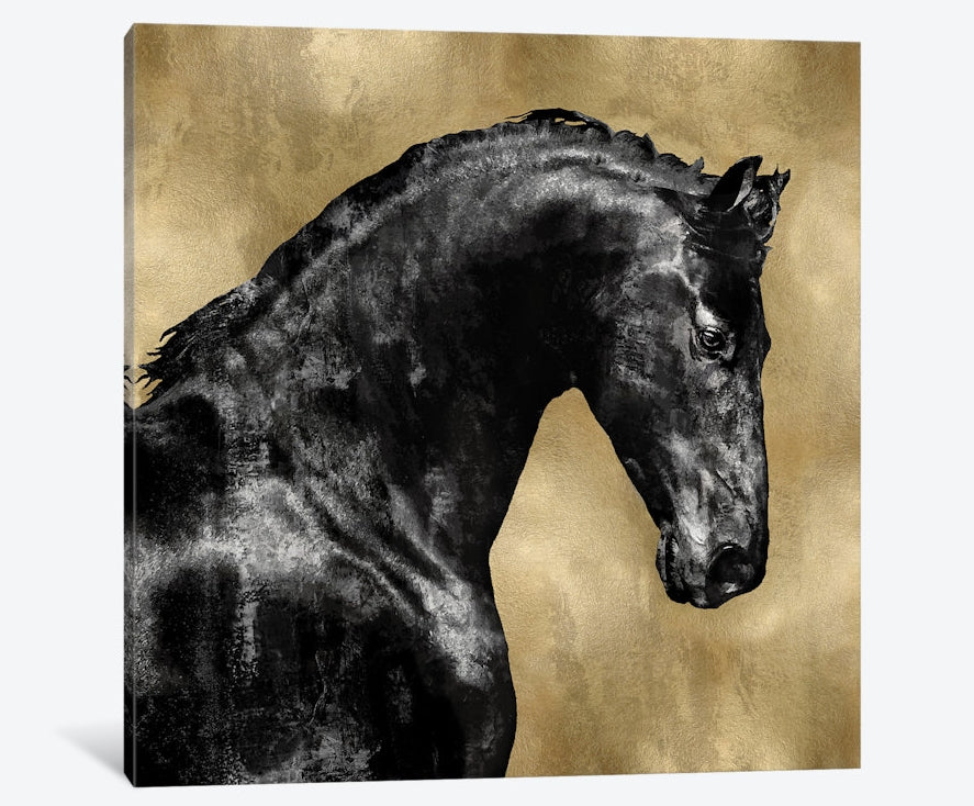 "Black Stallion On Gold - Canvas Print 26"" L x 26"" H x 0.75"" D"