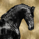 Black Stallion On Gold - Canvas Print 48