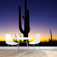 Saguaro Sunset Mural