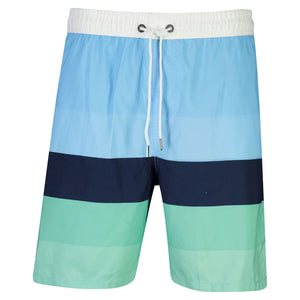 Mens Blue Mint Stripe Boardies
