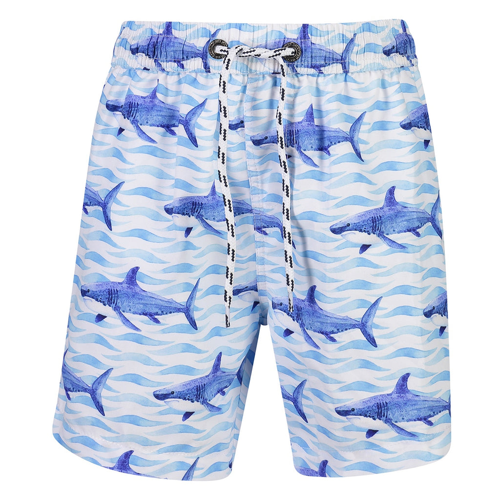 School of Sharks Boardies