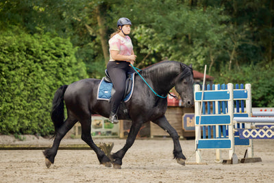 Worldwide neckrope dressage competition