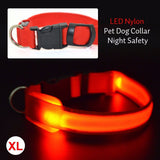 Dog Collar With LED Safety Light - Big Star Trading - 6