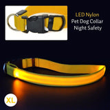Dog Collar With LED Safety Light - Big Star Trading - 8