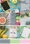 Fit Inspo - Deluxe Kit 6 Sheets - DEK Designs