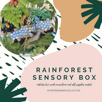 Rainforest Sensory Box