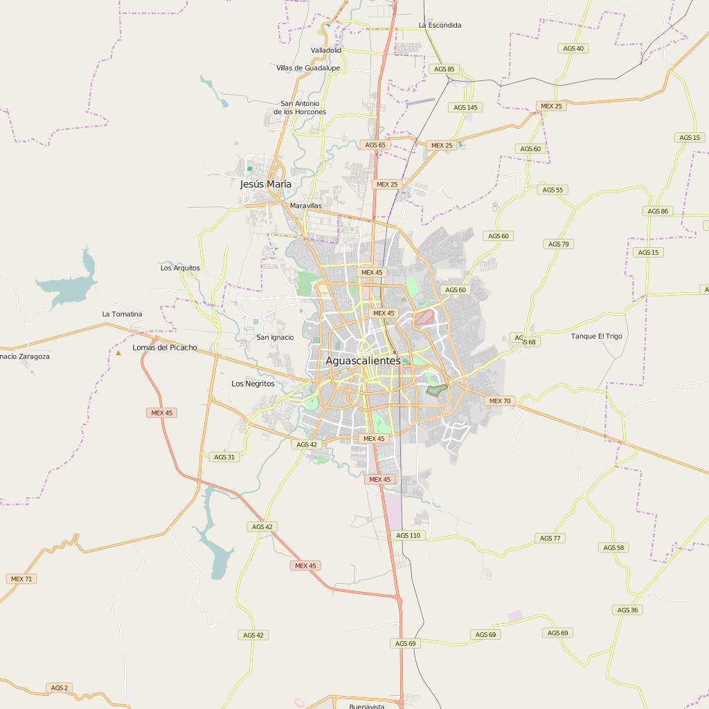 Editable City Map of Aguascalientes