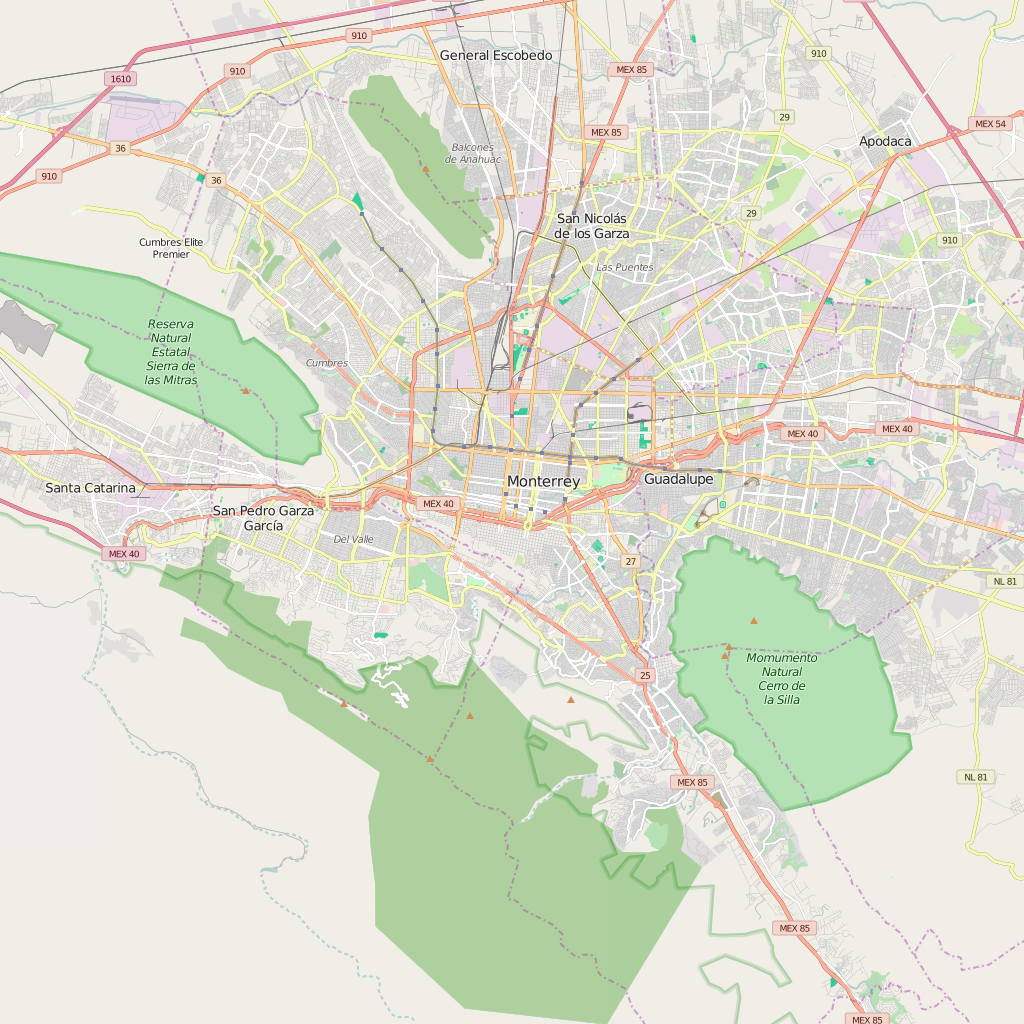 Editable City Map of Monterrey