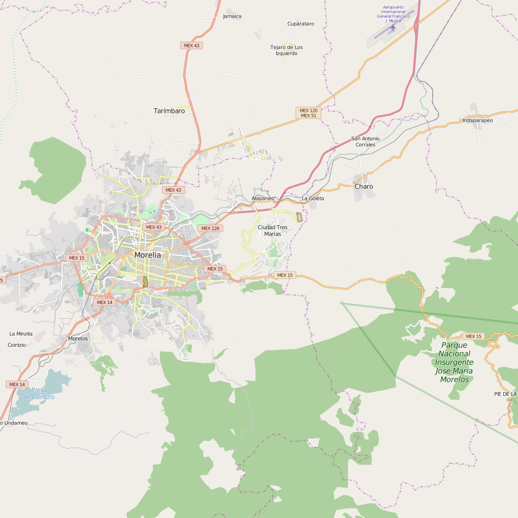 Editable City Map of Morelia
