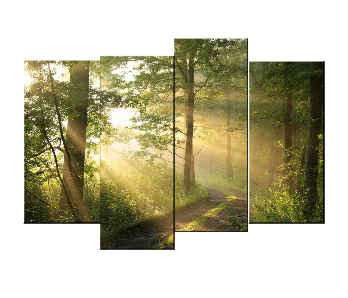 Large Sunlight Forests Canvas Wall Art