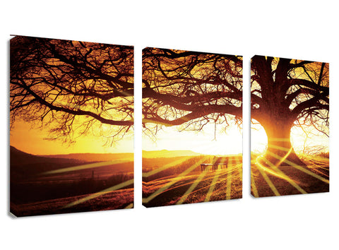 Ready to Hang Framed Sunset Tree Canvas Wall Art - Amoy Shop