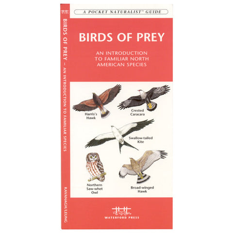 A Pocket Naturalist Guide to Birds of Prey