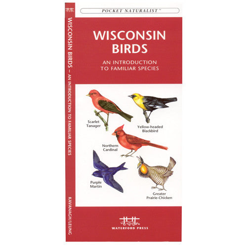 A Pocket Naturalist Guide to Wisconsin Birds