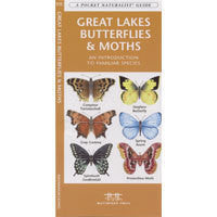 A Pocket Naturalist Guide to Great Lakes Butterflies and Moths