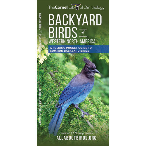 Backyard Birds (Western North America)