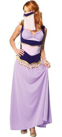 Adult Jasmine the Harem dancer Costume