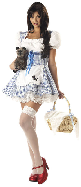 Adult Storybook Dorothy Costume
