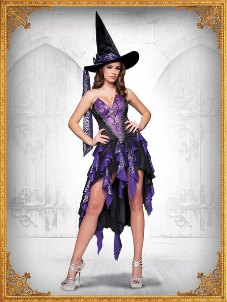 Adult Bewitching Beauty Costume