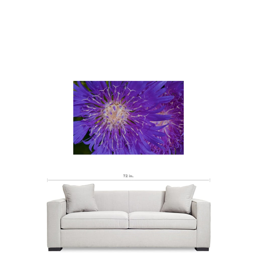 Flower I Visual Art by Adrian Rodriguez - louisacatharinedesign