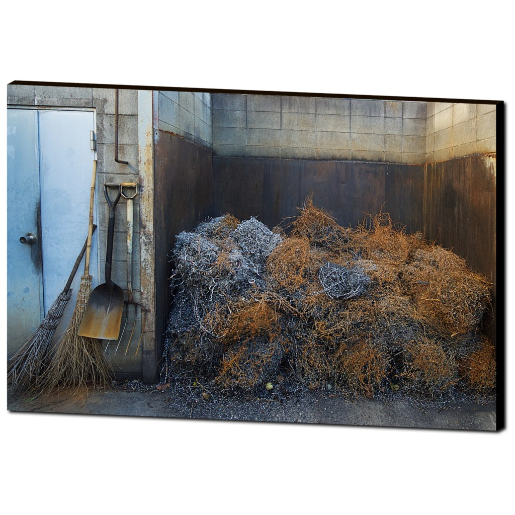 'Rust' Visual Canvas Art by Adrian Rodriguez