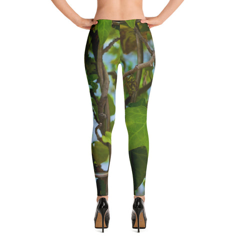 'Leaf' Leggings Color Palette by Adrian Rodriguez - louisacatharinedesign