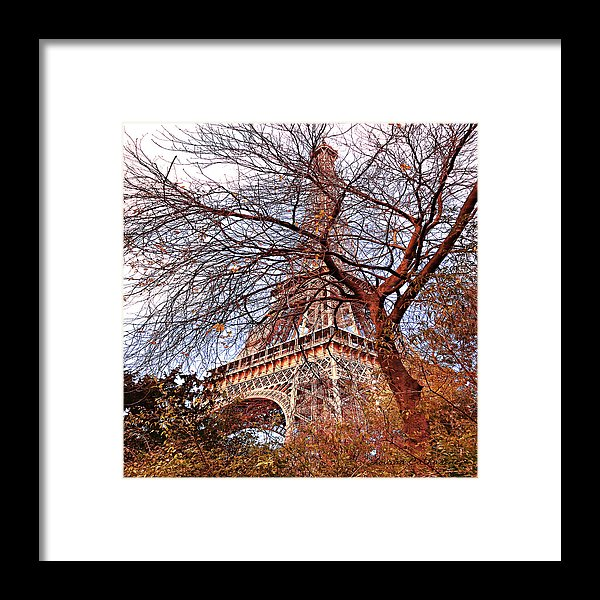 Paris Dreaming Framed Print by Louisa Catharine