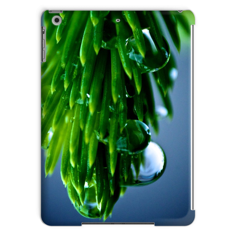 After The Rain Tablet Case by Adrian Rodriguez - louisacatharinedesign