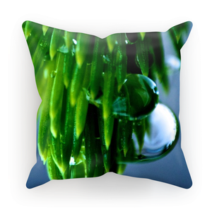 'After The Rain' Visual Artwork by Adrian Rodriguez Cushion Cover